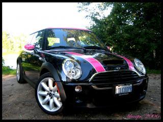 The pink mini   PinkCarAuction